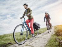 Ladies Hybrid Bikes